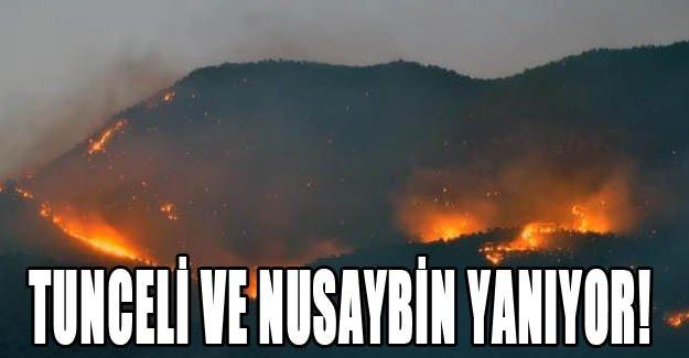 Tunceli ve Nusaybin yanıyor