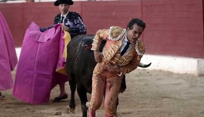 İspanyol matador boynuz darbesiyle öldü